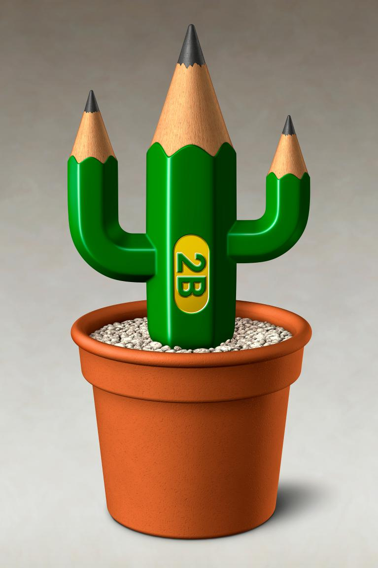 Pencil Cactus